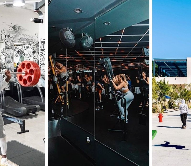 Design a Better You: Daily Wellness Picks at MDD