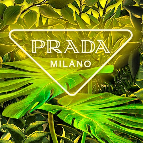 Prada presents 'Hyper Leaves'