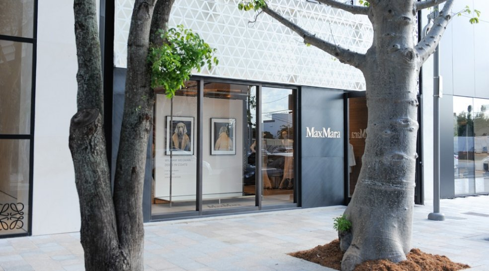 William Wegman at Max Mara celebrating Maison & Objet